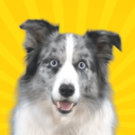 Real Pets™ by Fruwee  MODs APK  297