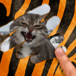 Scratch and guess the animal MODs APK 9.1