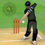 Smashing Cricket – a cricket game like none other MODs APK 3.1.0