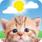 Weather Kitty – App & Widget Weather Forecast 5.3.6 MOD (Meow Prime Monthly)