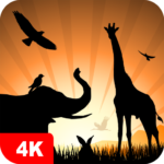 Animal Wallpapers 4K  5.3.2 MOD