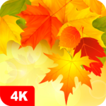 Autumn Wallpapers 4K 5.3.2 MOD