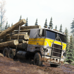 Cargo Truck Simulator Offroad: Truck Driving Games MOD (Unlimited Money) 0.6